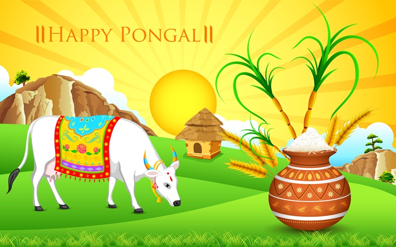 happy pongal-fiji